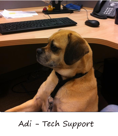 Adi from Tech Support