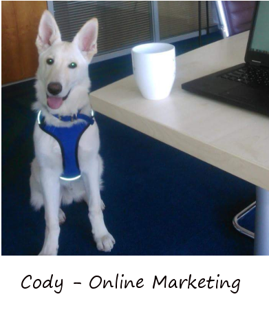 Cody from Online Marketing