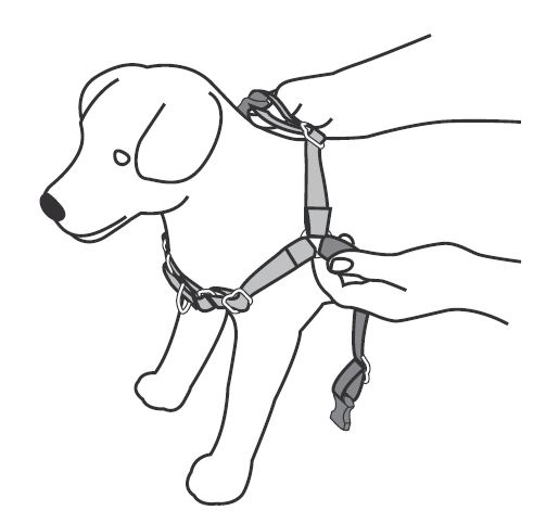 Support Amp Manuals Easy Walk Harness Petsafe Denmark