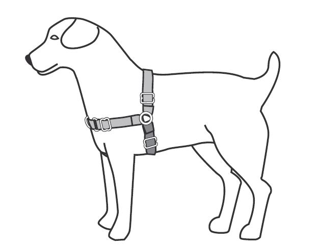 support  u0026 manuals  easy walk u00ae harnesses  u0026 headcollars